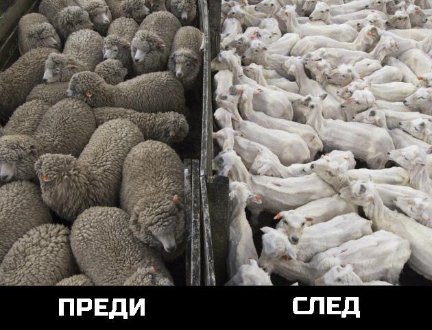 Преди и след http://gege.bg